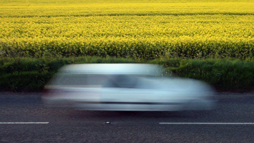 car going past oilseed rape plant field