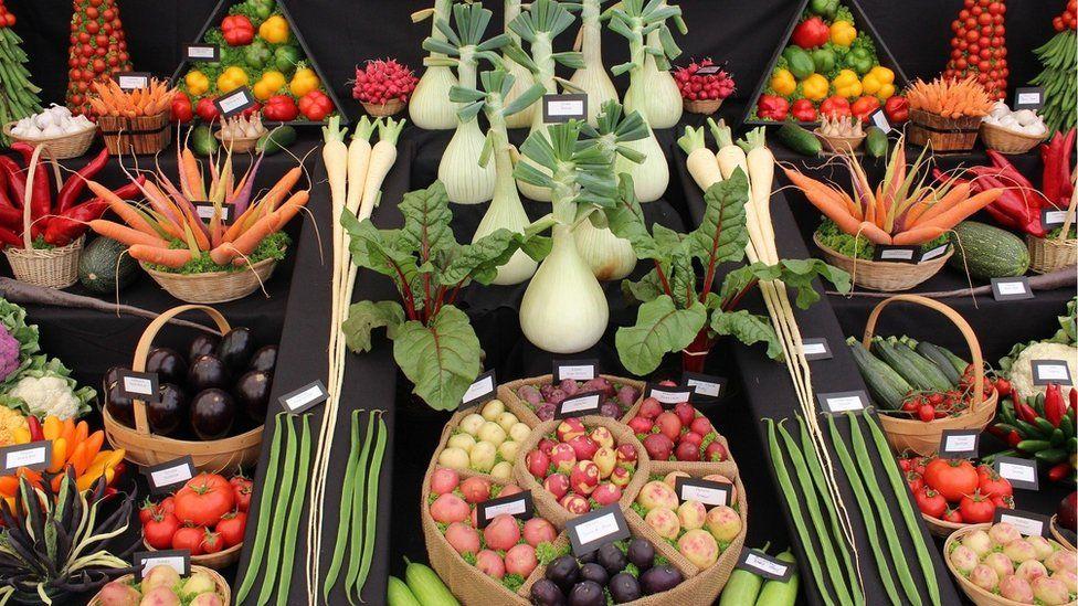 Arddangosfa lysiau // A display of vegetables