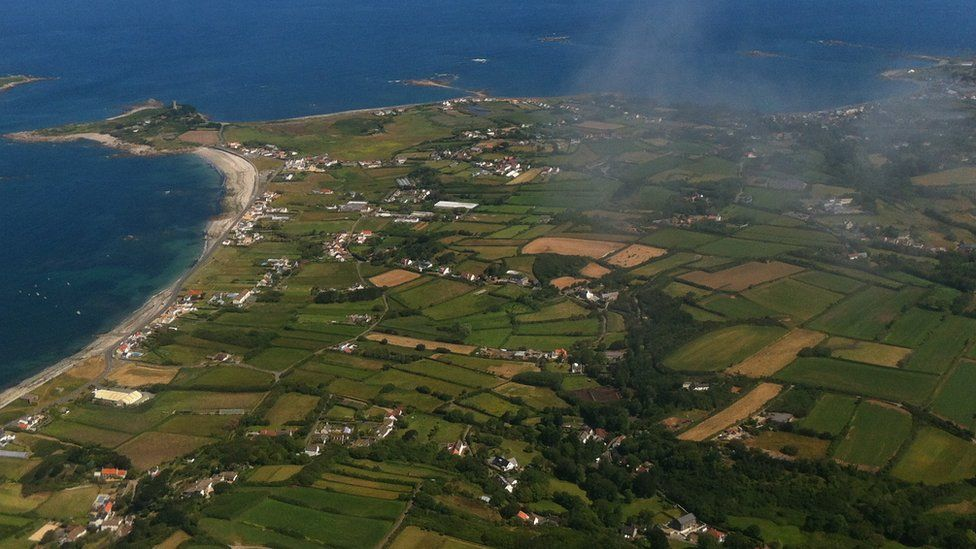 Guernsey's habitat decline is 'stark and concerning'