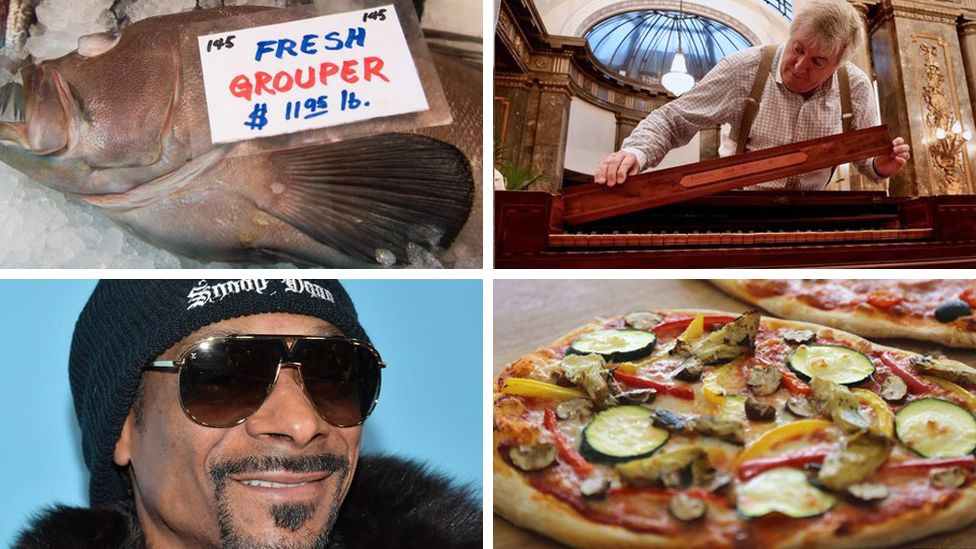 Clockwise from bottom left: Snoop Dogg, Grouper, Professor Geoffrey Lancaster, expert on the First Fleet piano, and pizza.