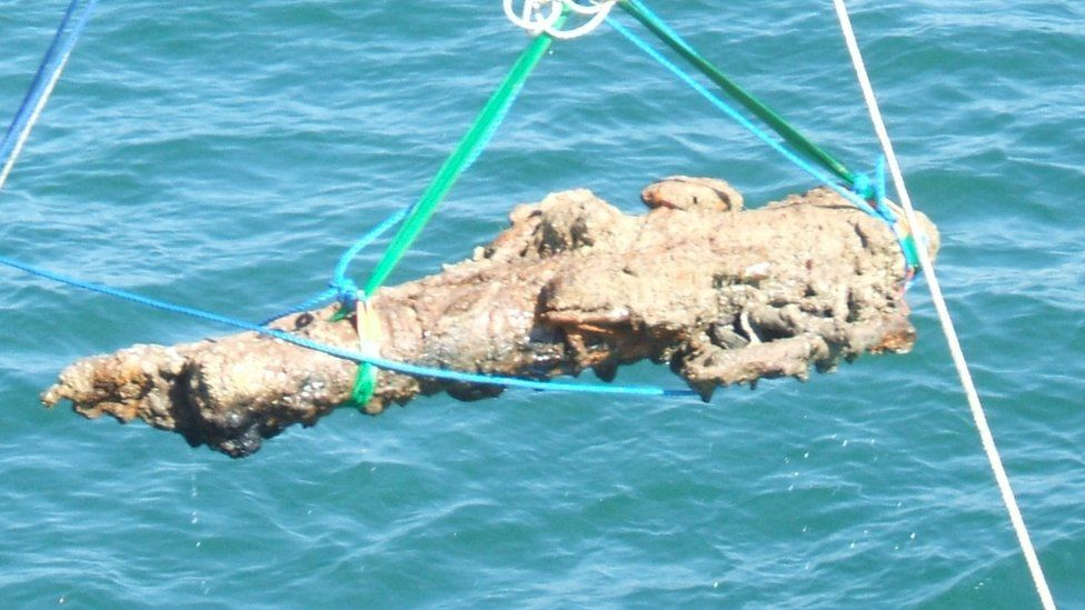 Cannon from the Alderney Elizabethan wreck raised from the seabed