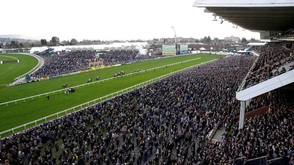 Cheltenham race crowds