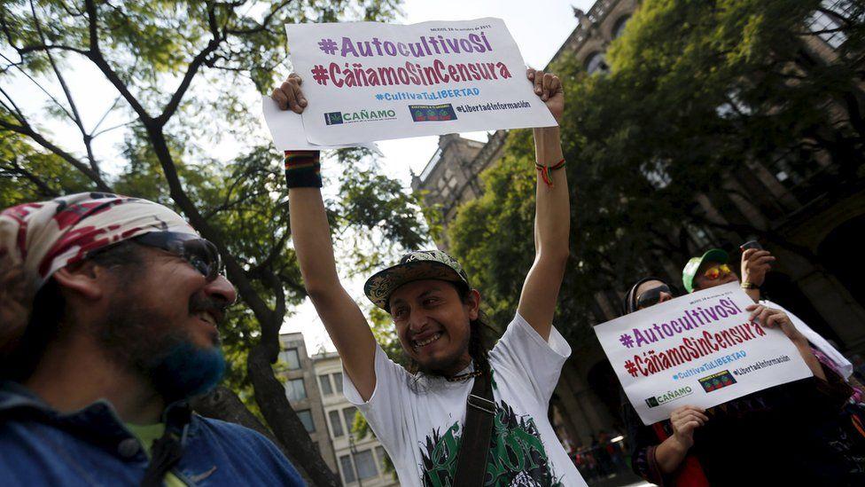 Supporters of marijuana legalisation celebrates