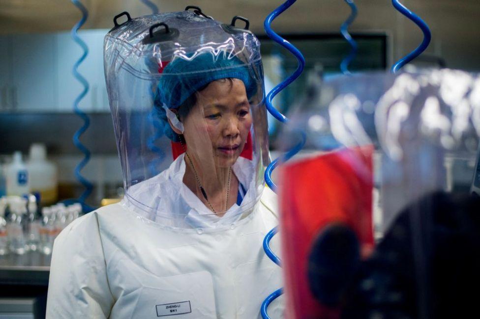 55岁的石正丽是武汉病毒所的研究员,她成为诸多新冠病毒阴谋论的核心。