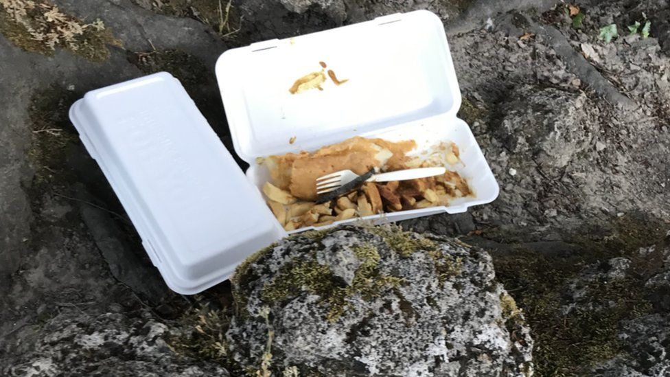 Fish and chips left in park