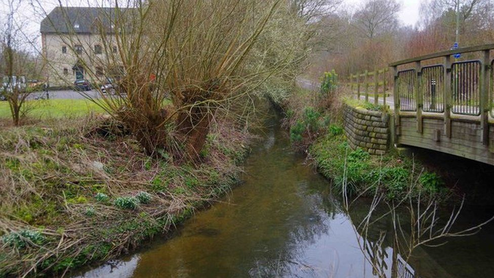 Colwell Brook and Queen Emma's Dyke