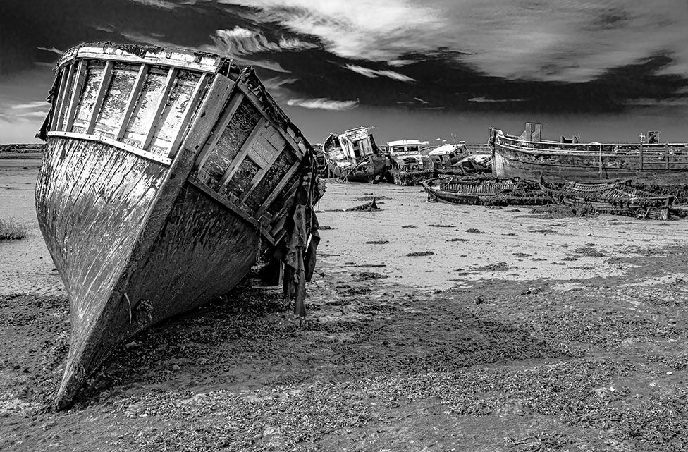Boats rot in the mud