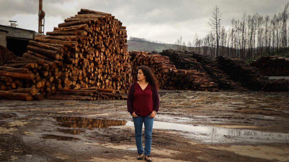 Sandra Tomás, manager of Tomás Madeira, stands next to several piles of burnt logs