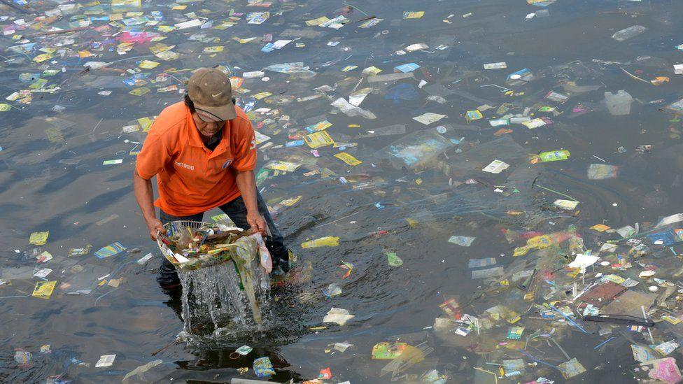 plastic seas