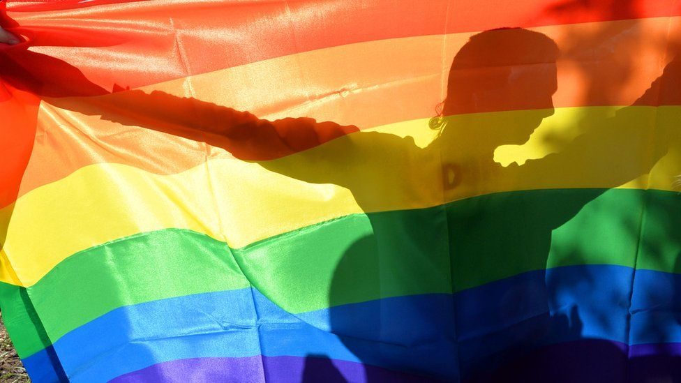Person holding a rainbow flag