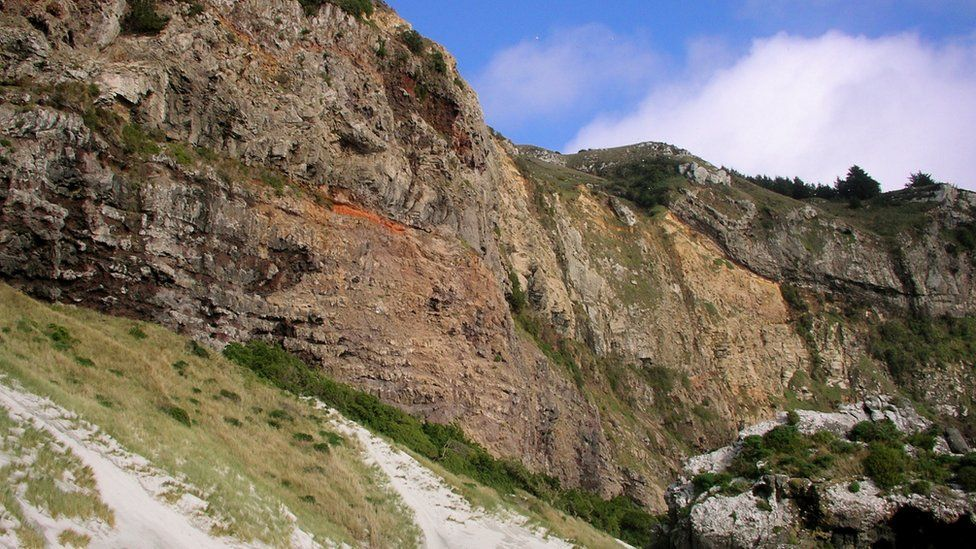 Coastal cliffs at the entrance to Otago harbour