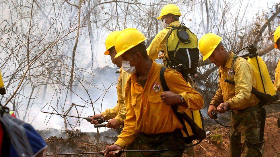 Incendios en el Amazonas: las críticas contra Bolivia y Paraguay (y no solo contra Brasil) por cómo cuidan sus bosques