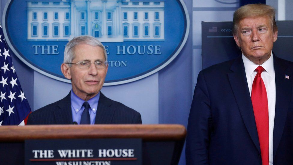 Covid: White House accuses top scientist Fauci of 'playing politics' - BBC  News