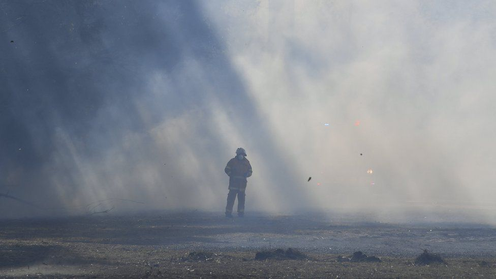 A firefighter stands in the middle of smoke from a bushfire near Nowra in New South Wales