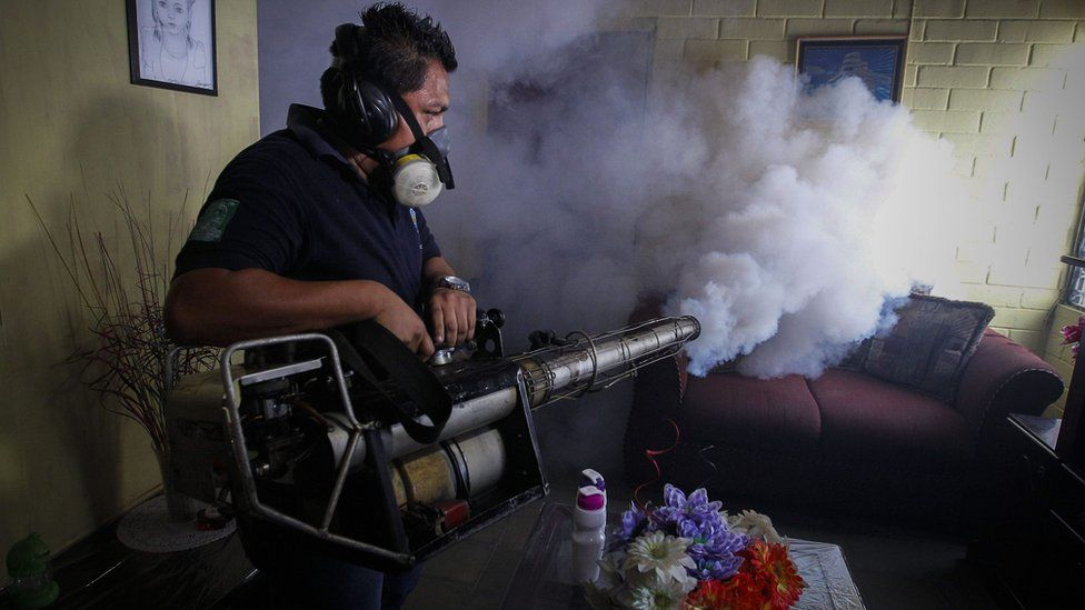 A worker of the Salvadorean Ministry of Health fumigates a house in Soyapango, 6 kilometrws from San Salvador, El Salvador, 21 January 2016.