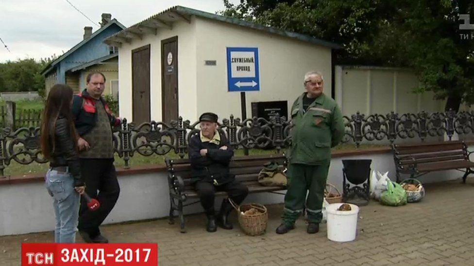 Mushrooms gathered in Pratasevichy village, Belarus