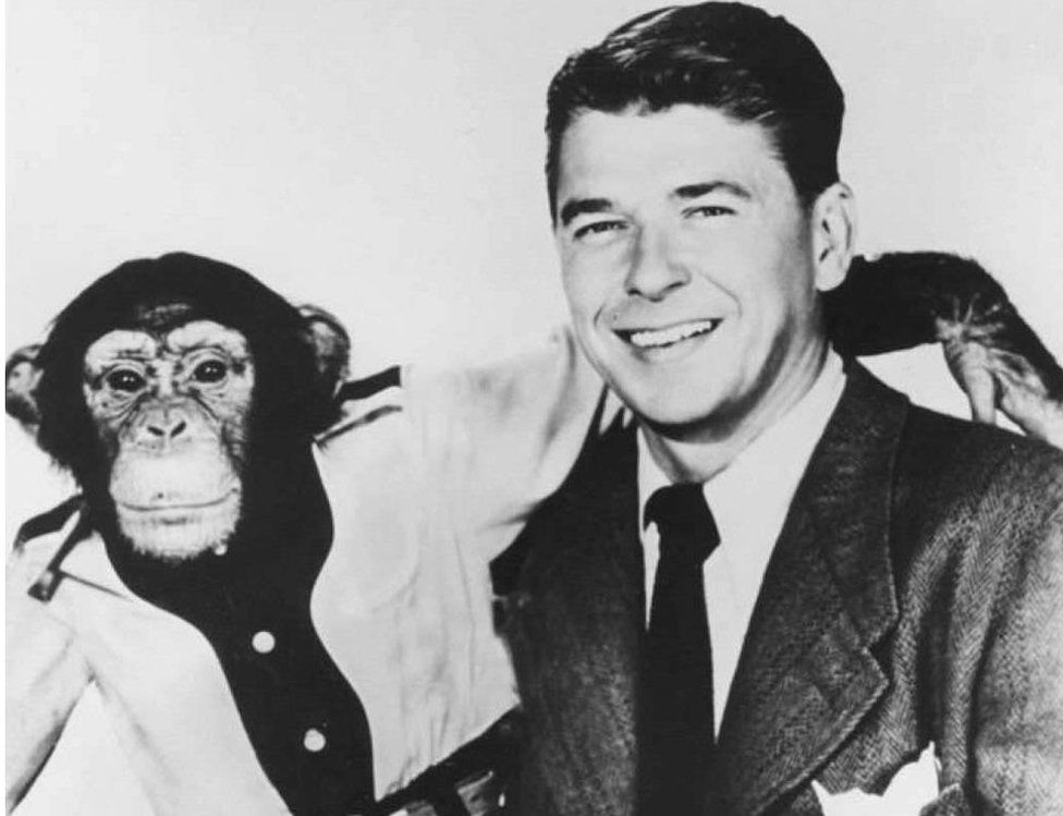 Ronald Reagan with Bonzo the chimp