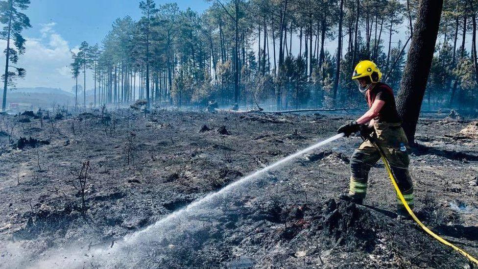 Wareham fire - Bank Holiday Monday