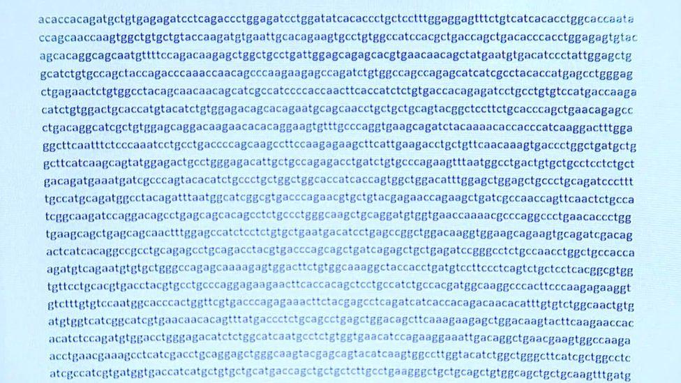 informacion sobre el virus en ingles