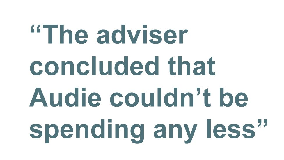 Quotebox: The adviser concluded that Audie couldn't be spending any less