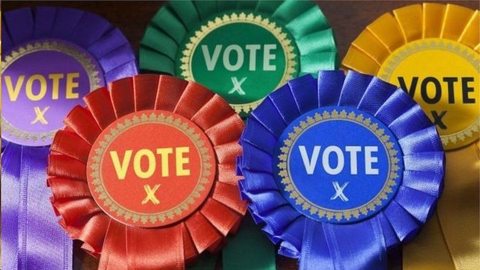 Rosettes with the word vote on them