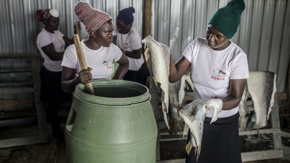 Two women place skins in tank which tans fish.
