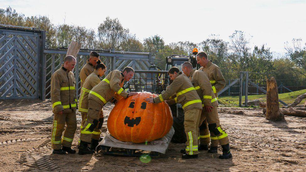Fire service move 50 stone pumpkin