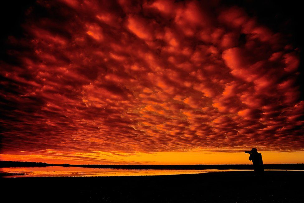 Silhouette photo of a sky sunset