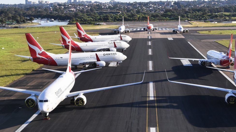 Qantas planes grouped on the tarmac at Sydney Airport