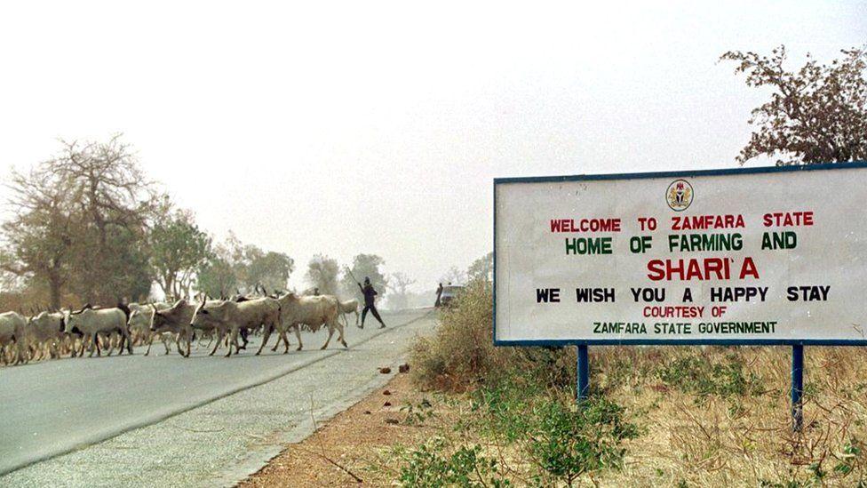 Bovins traversant la route par un panneau accueillant les gens dans l'état de Zamfara