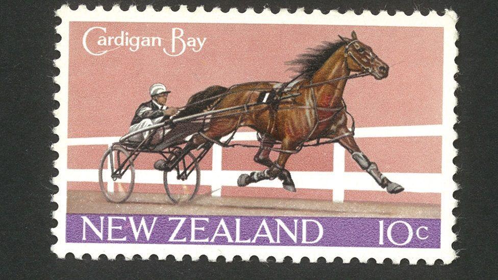 Stamp gyda cheffyl Cardigan Bay