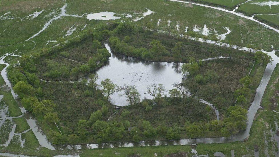 Duck decoy pond