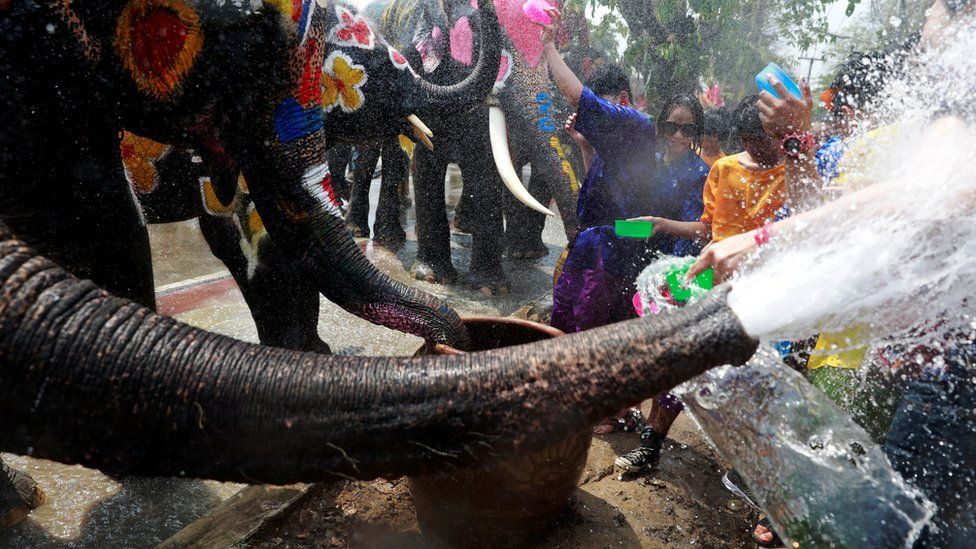 Elephants and people play with water during the Songkran water festival