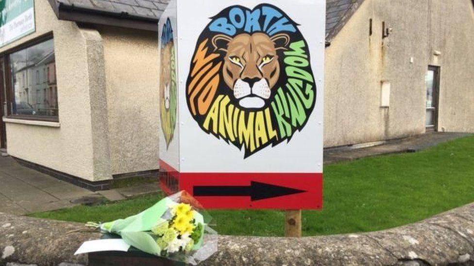 Sŵ Borth Wild Animal Kingdom, Ceredigion