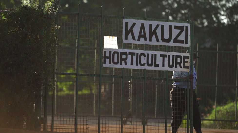 A female security guard closes a gate at Kakuzi farm