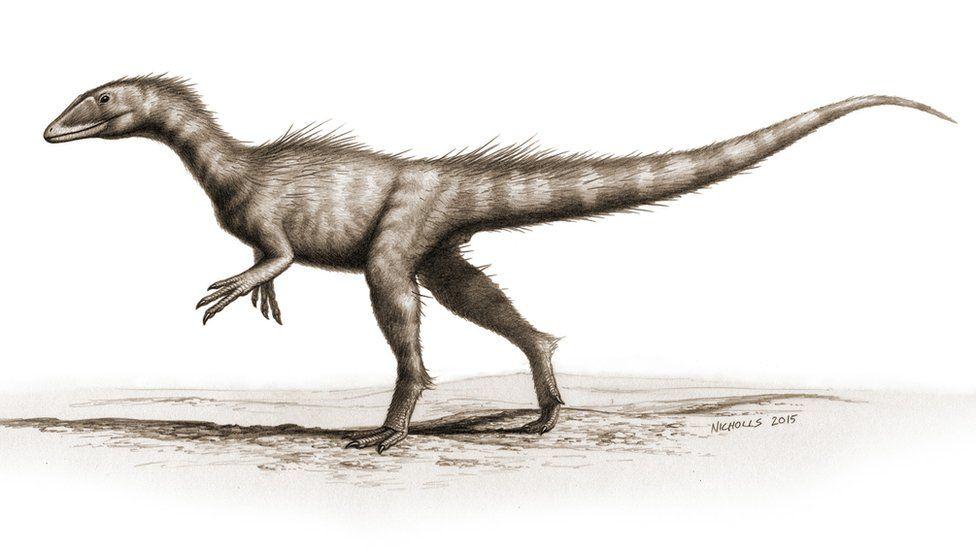 Reconstruction of dinosaur