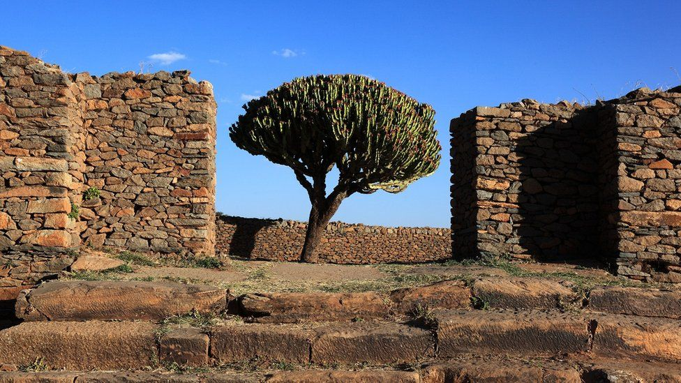 Ruins of the palace of the Queen of Sheba near Axum, Aksum, Dongur Palace