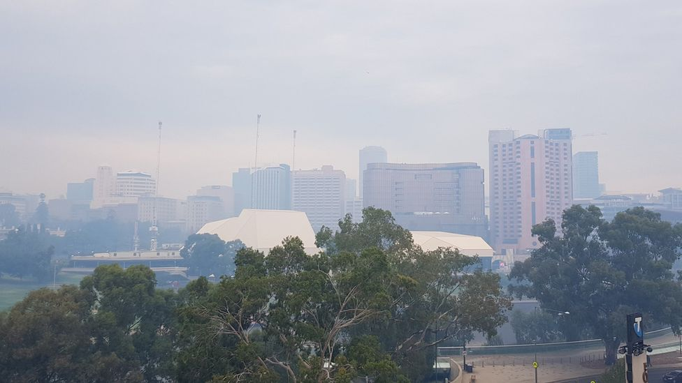 Bushfire smoke covers the Adelaide city skyline