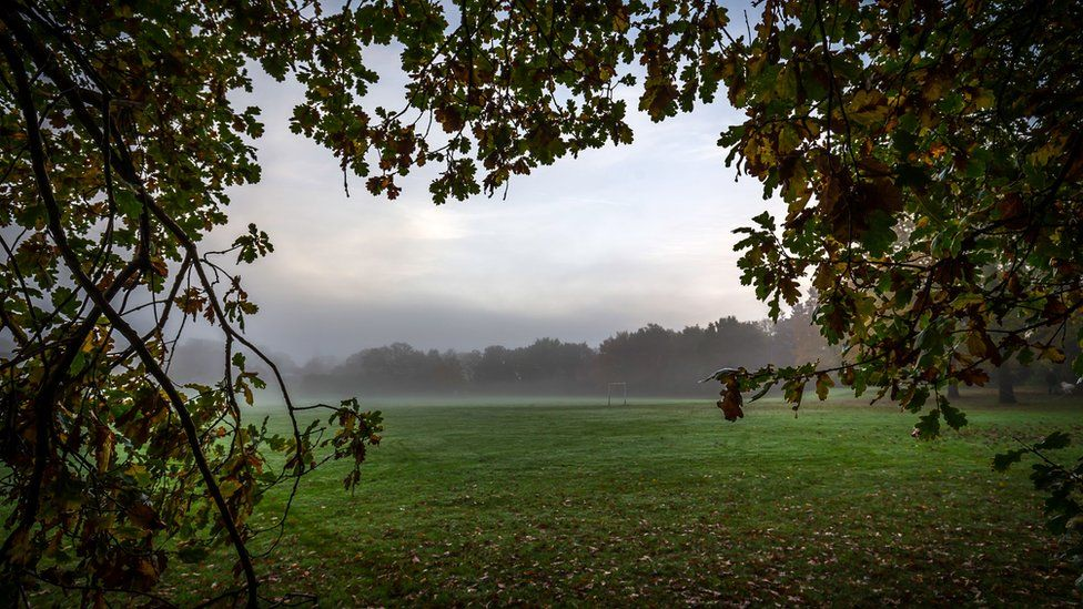 A foggy field in Knowle Park, in Solihull, West Midlands