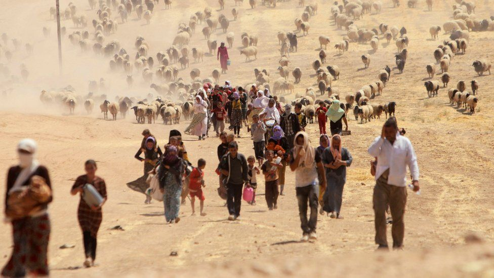 Displaced Iraqis from the Yazidi religious minority flee Islamic State fighters by walking towards the Syrian border (11 August 2014)