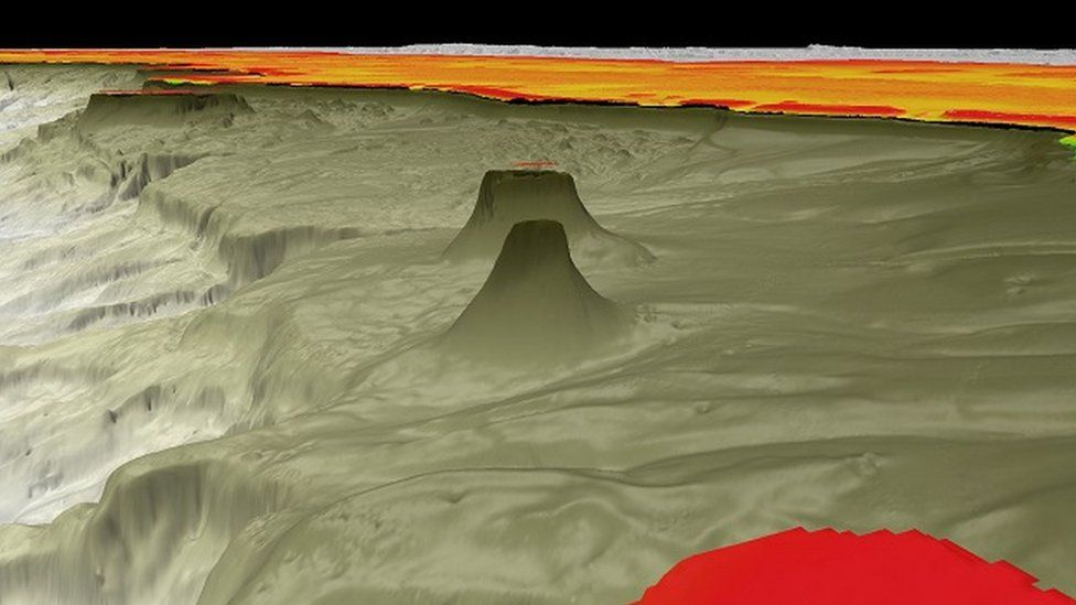 A 3D image showing the new reef