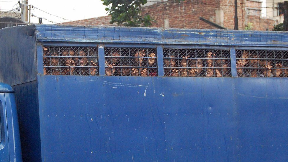 Prisoners in Bangladesh