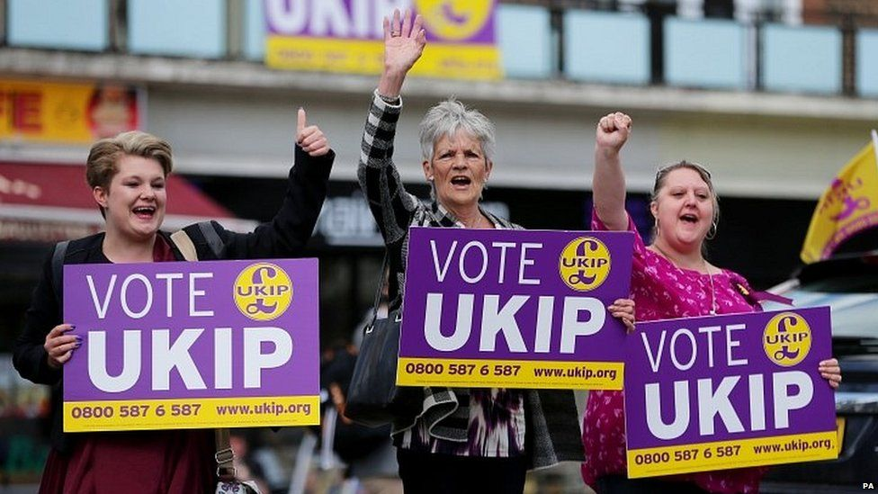 UKIP supporters in 2014