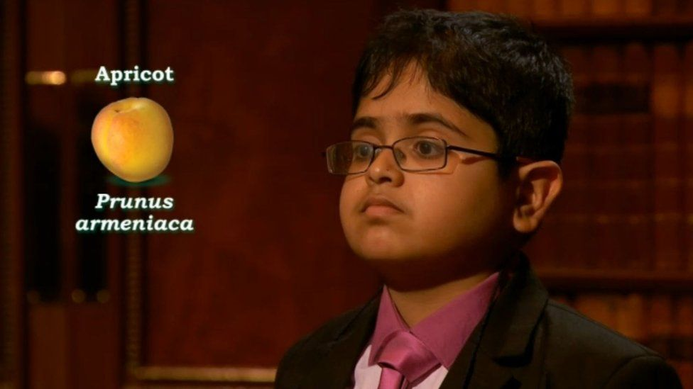 Rahul answering question on the scientific name of apricot