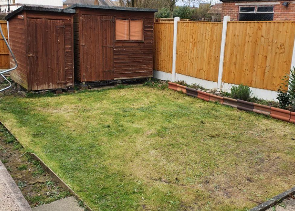 Darlington's garden