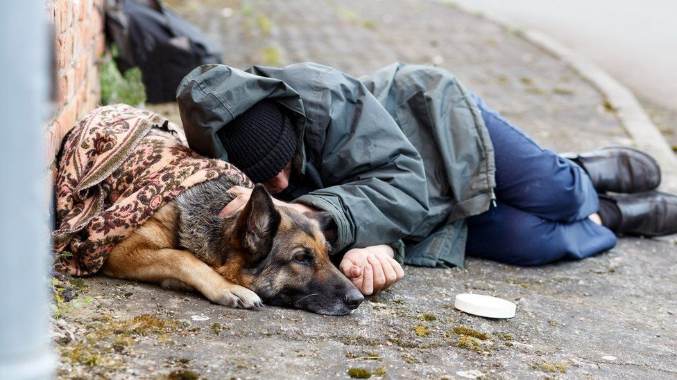 Glasgow homeless shelter to allow dogs to stay with owners - BBC News
