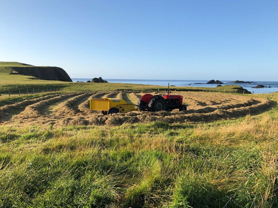 Tractor and wuffler on Fair Isle