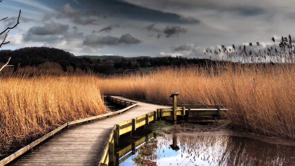 RSPB reserve, Conwy