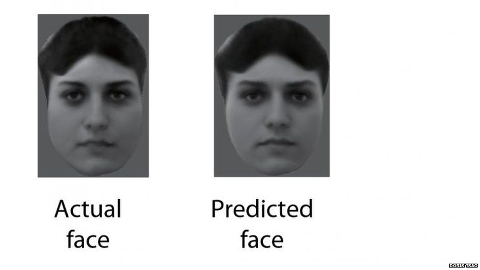Faces shown to the monkeys were almost identical to reconstructions made by monitoring brain activity