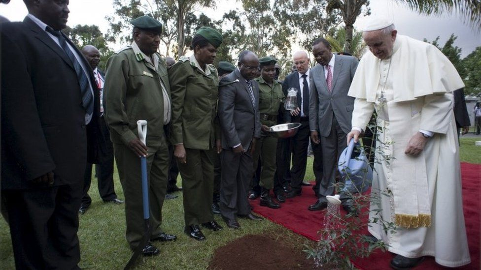 """Pope Francis (R) waters a plant next to Kenya""""s President Uhuru Kenyatta during a ceremony at the State House in Kenya""""s capital Nairobi,"""
